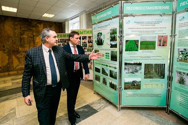 Сергиево-Посадский район восстанавливает связи с лесной наукой