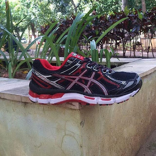 Sepatu volly cowok terbaru