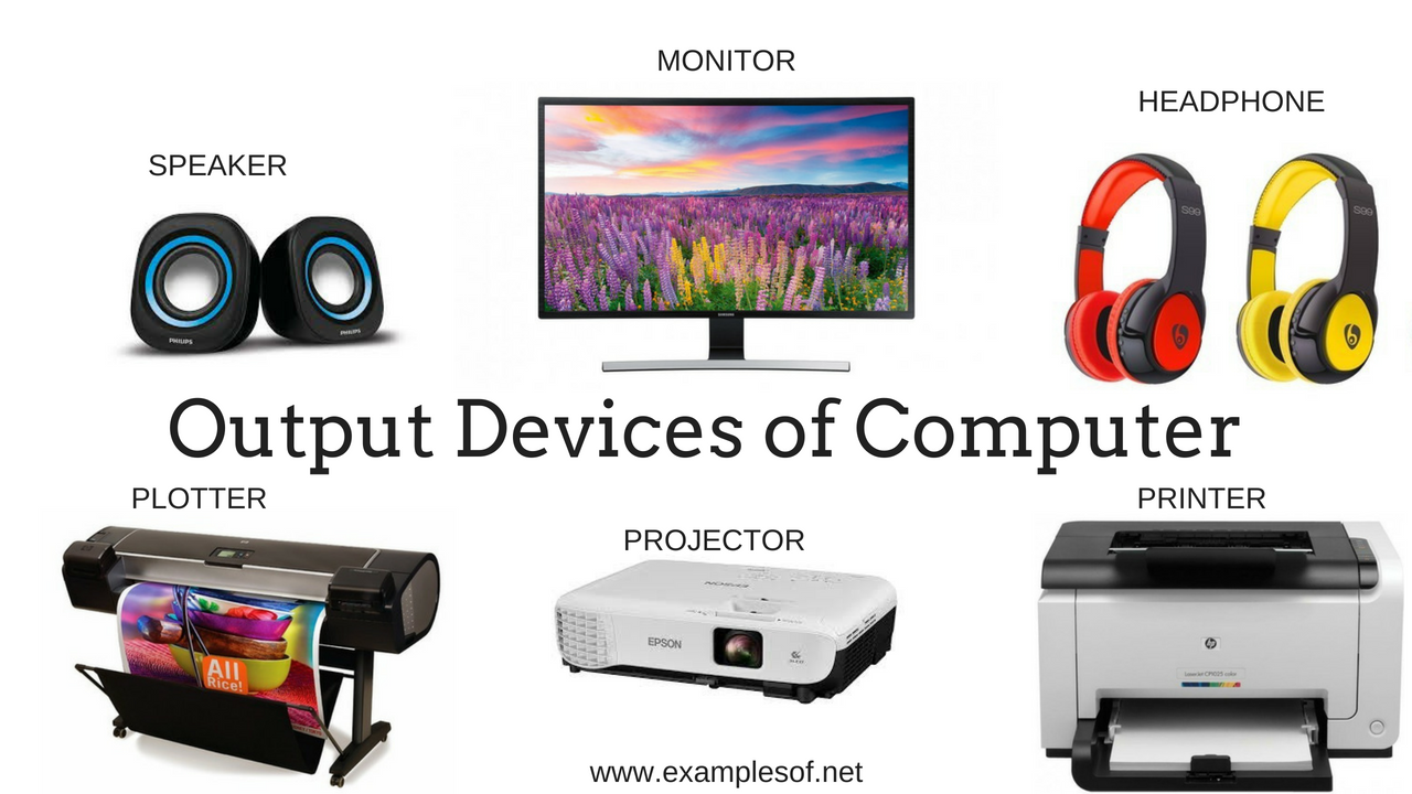 20 examples of input devices