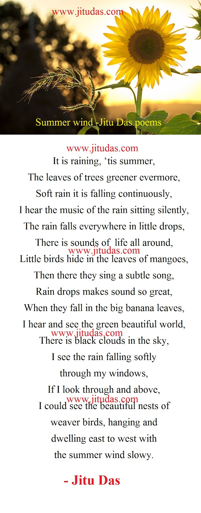 Life poems,Summer wind poem by Jitu Das english poems