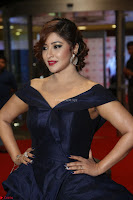 Payal Ghosh aka Harika in Dark Blue Deep Neck Sleeveless Gown at 64th Jio Filmfare Awards South 2017 ~  Exclusive 095.JPG