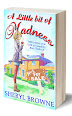 A Little Bit of Madness by Sheryl Browne