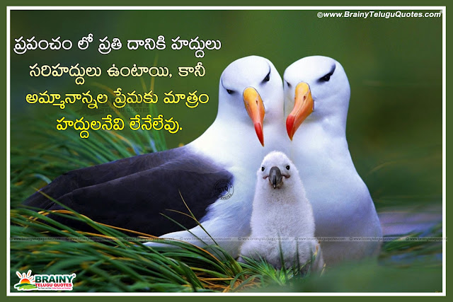 Telugu Quotes on family, Telugu latest Family importance Quotes, Mother Quotes in Telugu