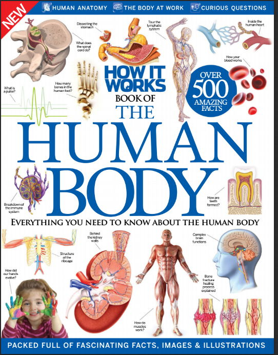How It Works- Book of the Human Body (2016) [PDF]