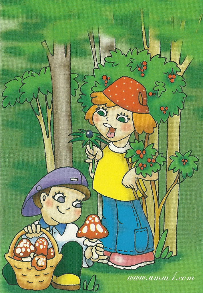 Сюжетные картинки грибов