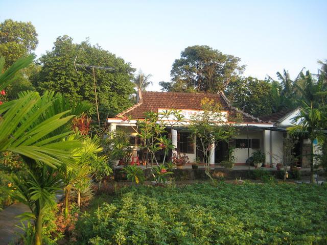 Hình ảnh làng quê Thủy Triều, Phổ Văn, Đức Phổ 17