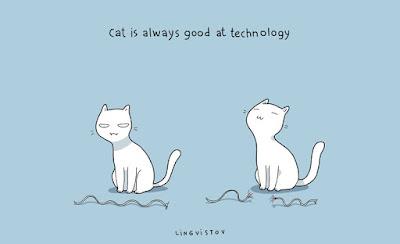 Teknik-Kedi