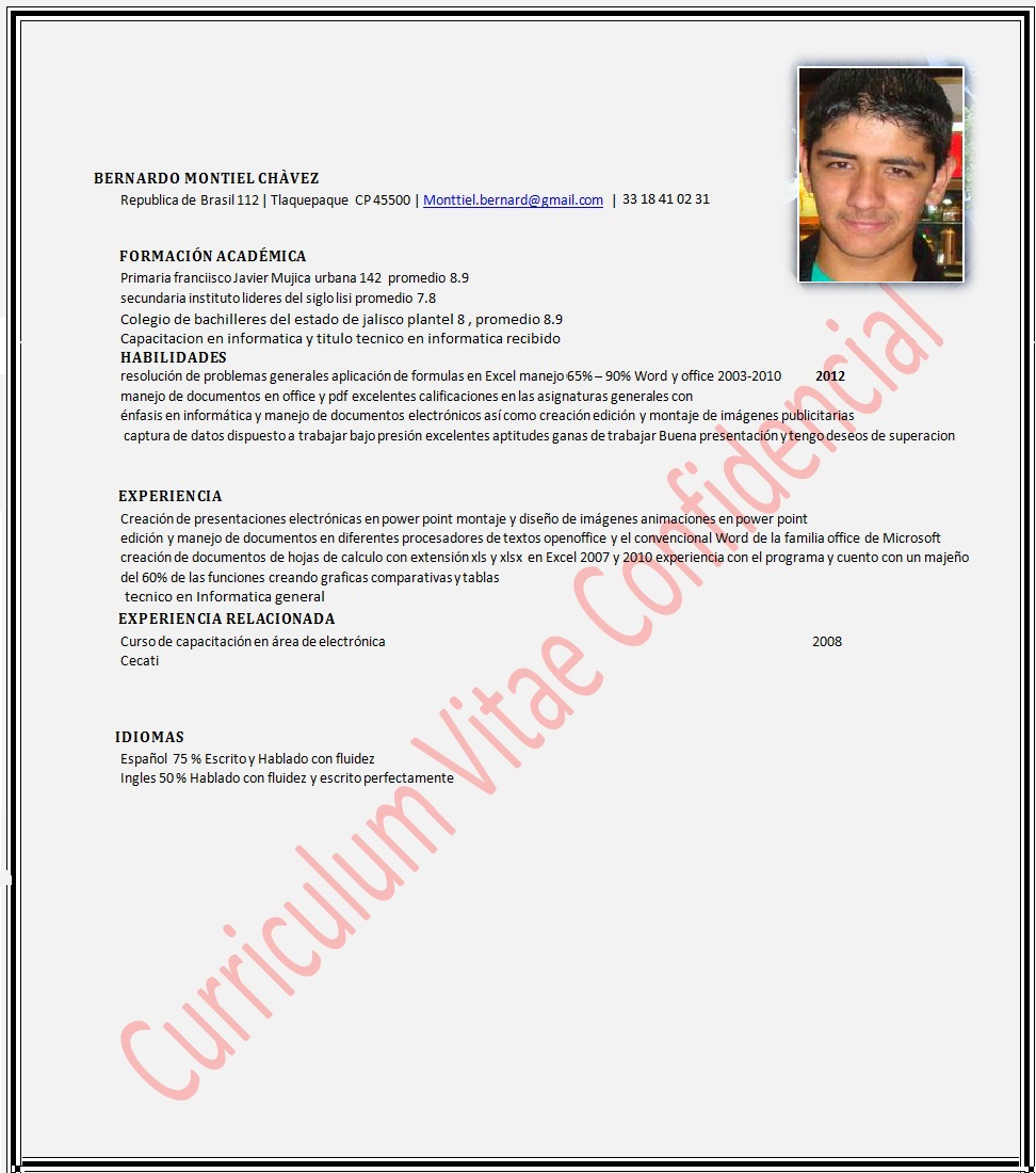 Curriculum Vitae Facil Online Write A Research Paper For Me