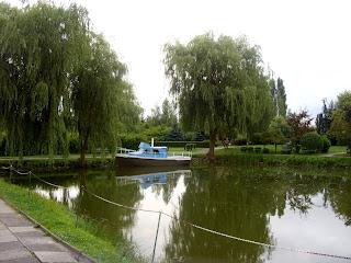 ogród w Rokitnie