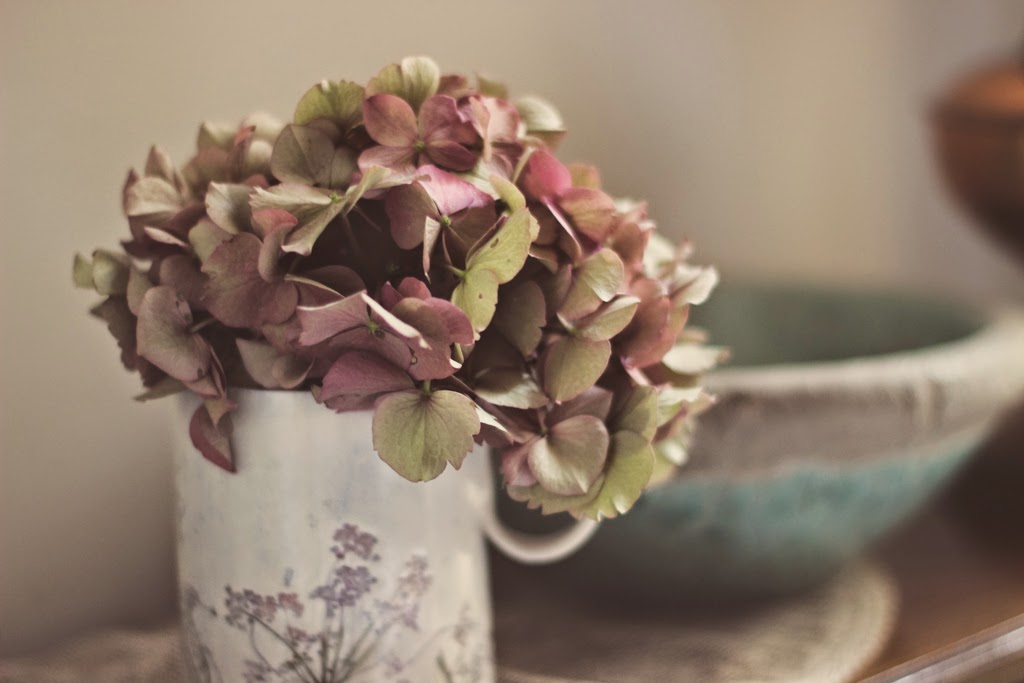 How to dry Hydrangea flowers + Hydrangea wreath