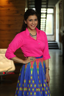 Actress Mannar Chopra in Pink Top and Blue Skirt at Rogue movie Interview  0046.JPG