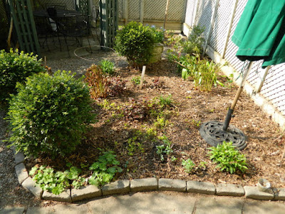Toronto Spring Garden Cleanup Cabbagetown After by Paul Jung Gardening Services a Toronto Gardening Company