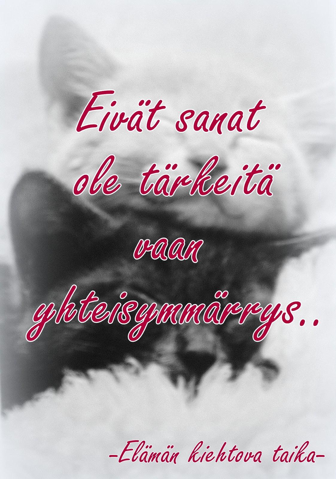 Pillua tampere oulu suomi