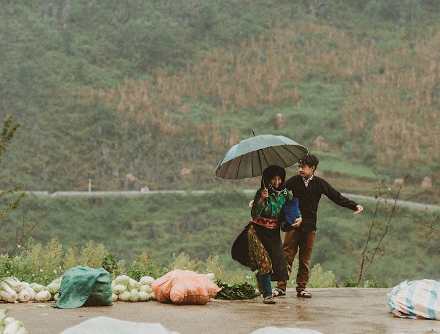 Visit Ha Giang season of ripe rice, contemplate the idyllic life 7