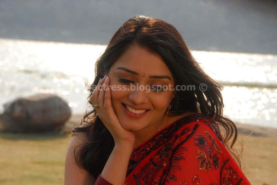 Nikitha saree photos gallery