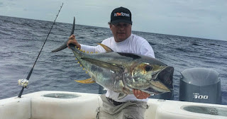yellowfin tuna in the spread seth horne