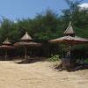 Pantai Lombang Dan Cemara Udang Di Sumenep Madura