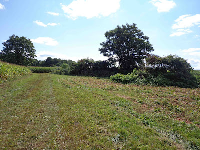 Morris County Preserves 126th Farm -- 54-acre farm in Mount Olive