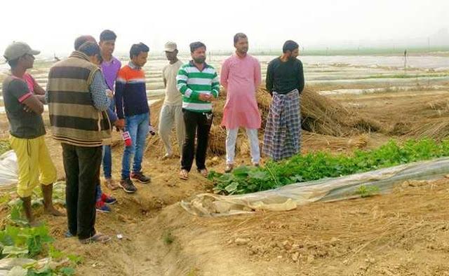 YouTube से खेती सीख रहे हैं किसान, बेमौसम सब्जियां उगा कर कर रहे लाखों की कमाई