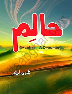 Haalim Episode 16 By Nimra Ahmad Pdf Free Download