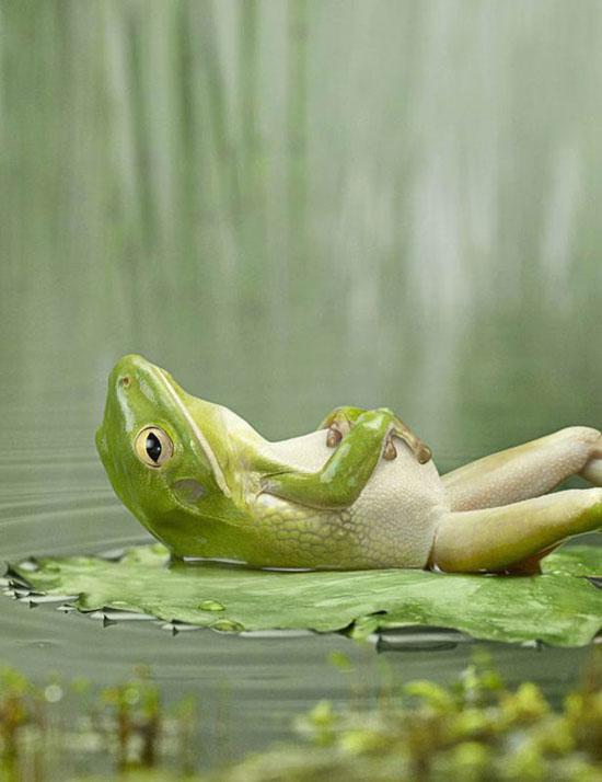 restez zen la respiration un moyen de combattre le stress. Black Bedroom Furniture Sets. Home Design Ideas