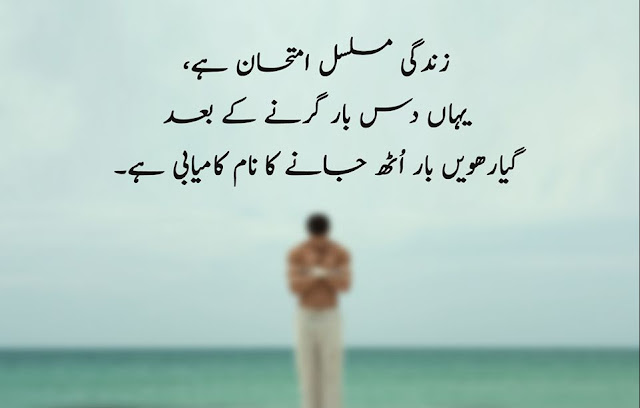 20 Urdu Quotes About Success And Struggle