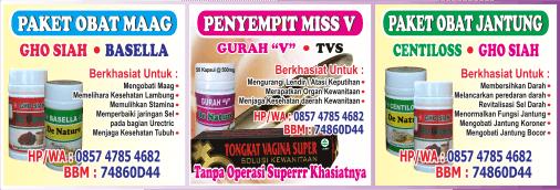 kombinasi herbal Obat Maag Akut, kombinasi herbal Penyempit dan perapat Miss V, (kombinasi herbal kembali gadis perawan), kombinasi herbal Obat Jantung, ( kombinasi herbal jantung bocor)