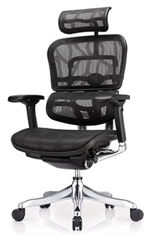 Eurotech Ergo Elite Chair