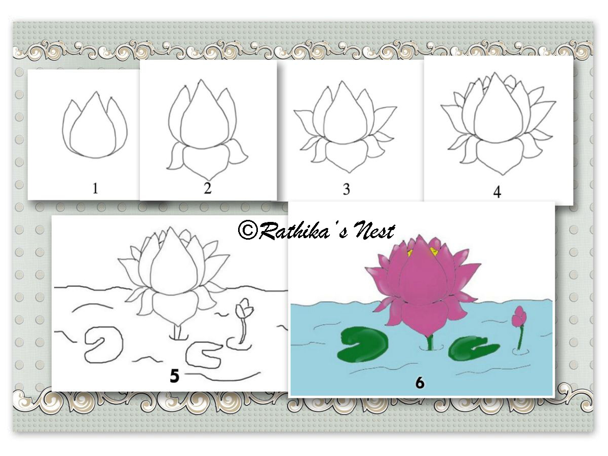 Rathikas Nest How To Draw A Lotus Flower