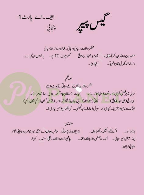 1st Year Punjabi Guess Paper