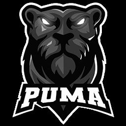 logo dream league soccer puma