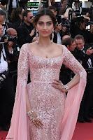 Sonam Kapoor looks stunning in Cannes 2017 012.jpg
