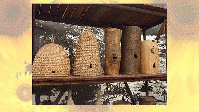 casa de abejas casera