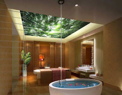 Stretch ceiling,3d stretch ceiling, stretch ceiling DIY, stretch ceiling designs,3d ceiling art for bathroom