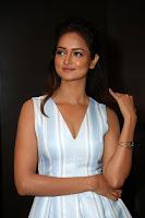 Shanvi (24).jpg