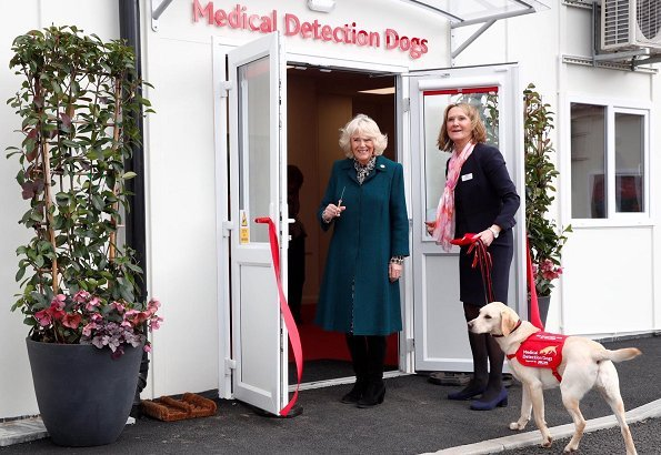 Medical Detection Dogs was founded in 2008 by Dr Claire Guest and Dr John Church, who believed that dogs' powerful noses could help detect disease