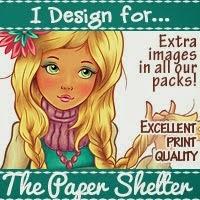 THE PAPER SHELTER - DT TEAM B