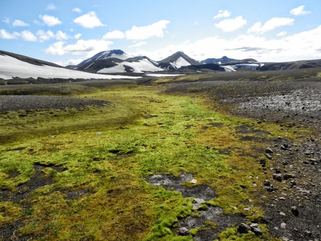Musgo-nieve-y-lava-en-Islandia