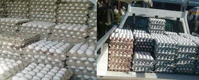 نابل: حجز 14 ألف بيضة بقليبية