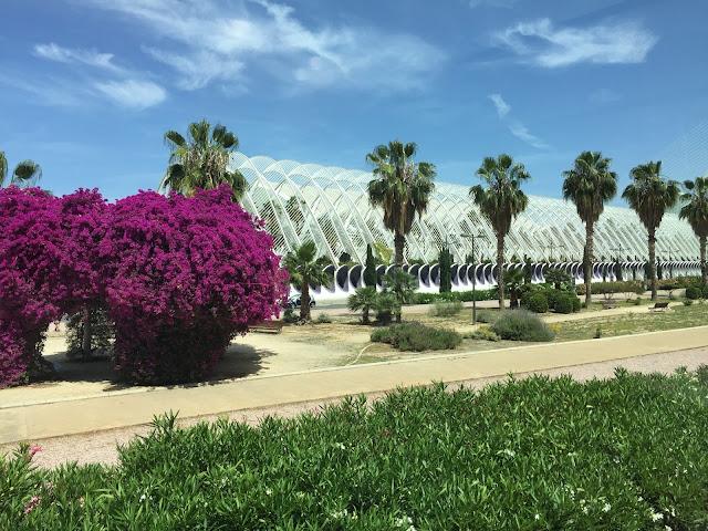 Bustour Valencia Hopp on hopp off Tours Stadt der Kuenste und Wissenschaften