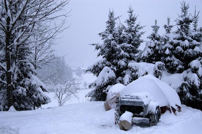 Karsen snow
