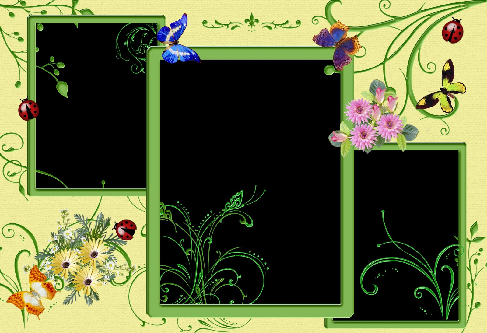 HD Photo Frames Images - Top 10 Wallpapers