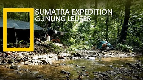 Bukit Lawang Jungle Camping And Trekking 5Days 4Nights