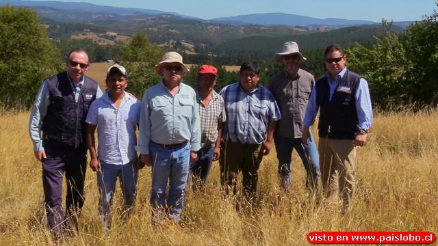 INDAP realiza visita técnica a predios de comunidades Mapuche Huilliche