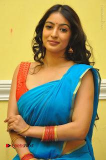 Telugu Actress Vaibhavi Stills in Blue Saree at Www.Meena Bazaar Movie Opening  0040.JPG