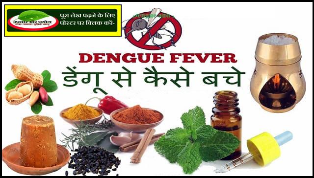 डेंगू की प्राकृतिक चिकित्सा तथा रोकथाम