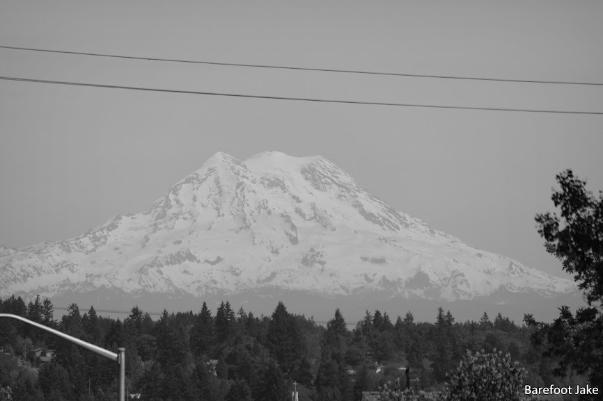 Mount rainier from Olympia