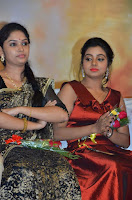 Pichuva Kaththi Tamil Movie Audio Launch Stills  0036.jpg