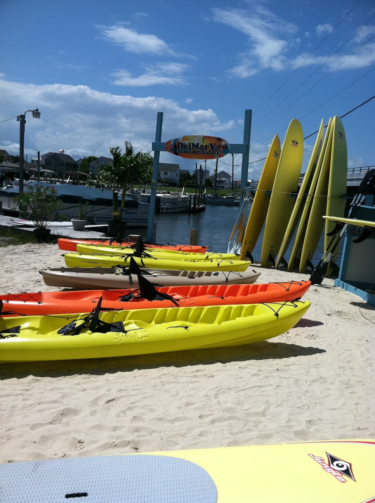 Live To Sail And Sup Used Paddle Boards Ocean City