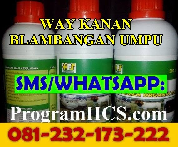 Jual SOC HCS Way Kanan Blambangan Umpu